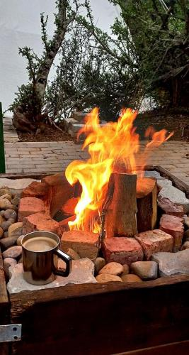 Barbecue/Braai fire